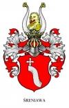 sreniawa-z-rosyjskiej-strony-aristocratic-club-ru2-Polen5-rus.jpg